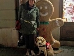 Muffin - Katával, avagy miként lesz egy okos kölyökből segítség